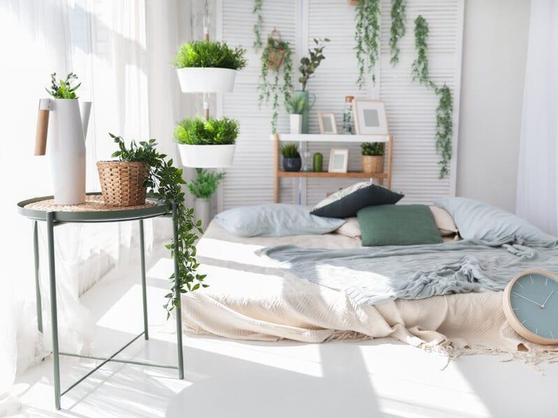 Boho bedroom with plants