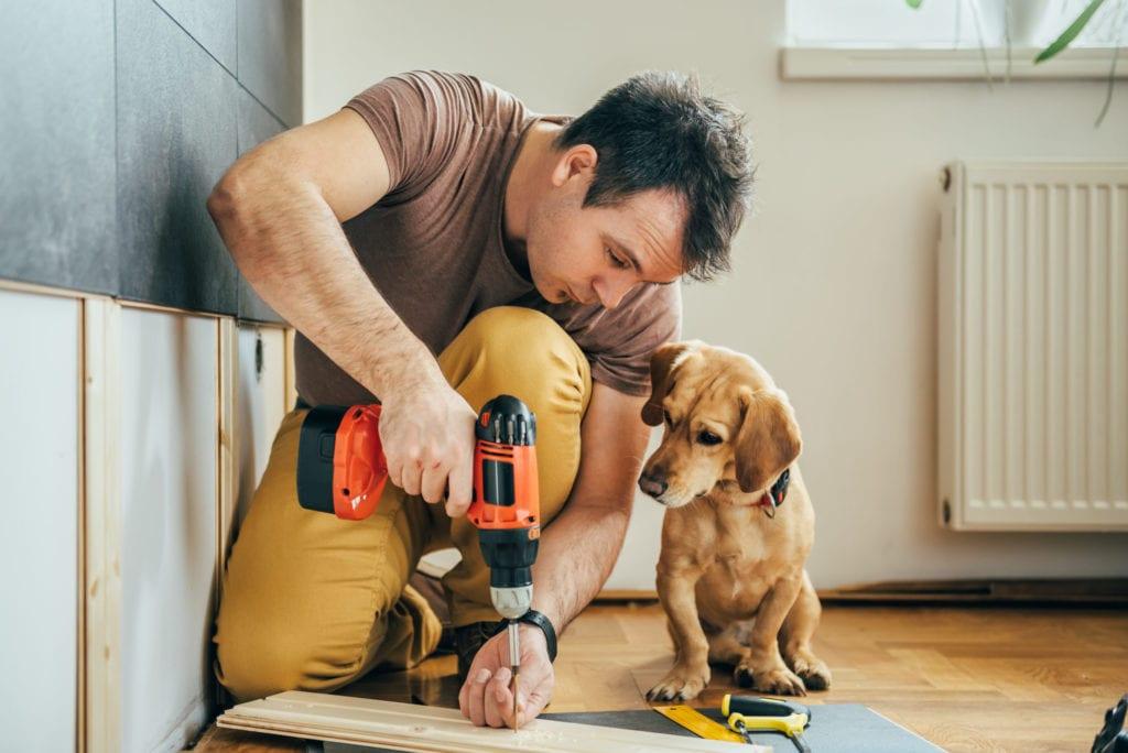 man renovating home with dog