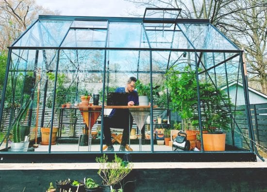 Work from home in greenhouse