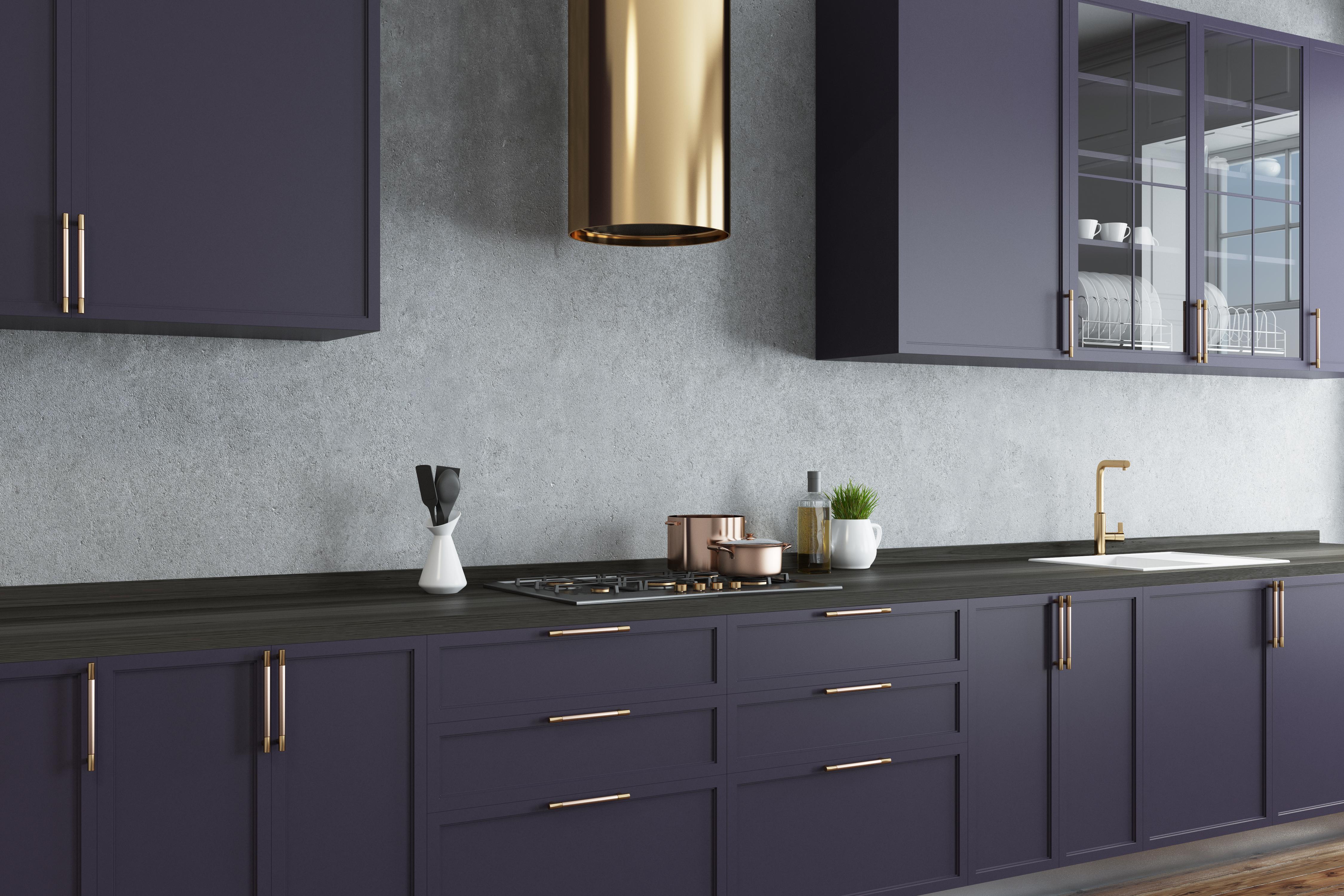 Modern kitchen with dark purple cabinets