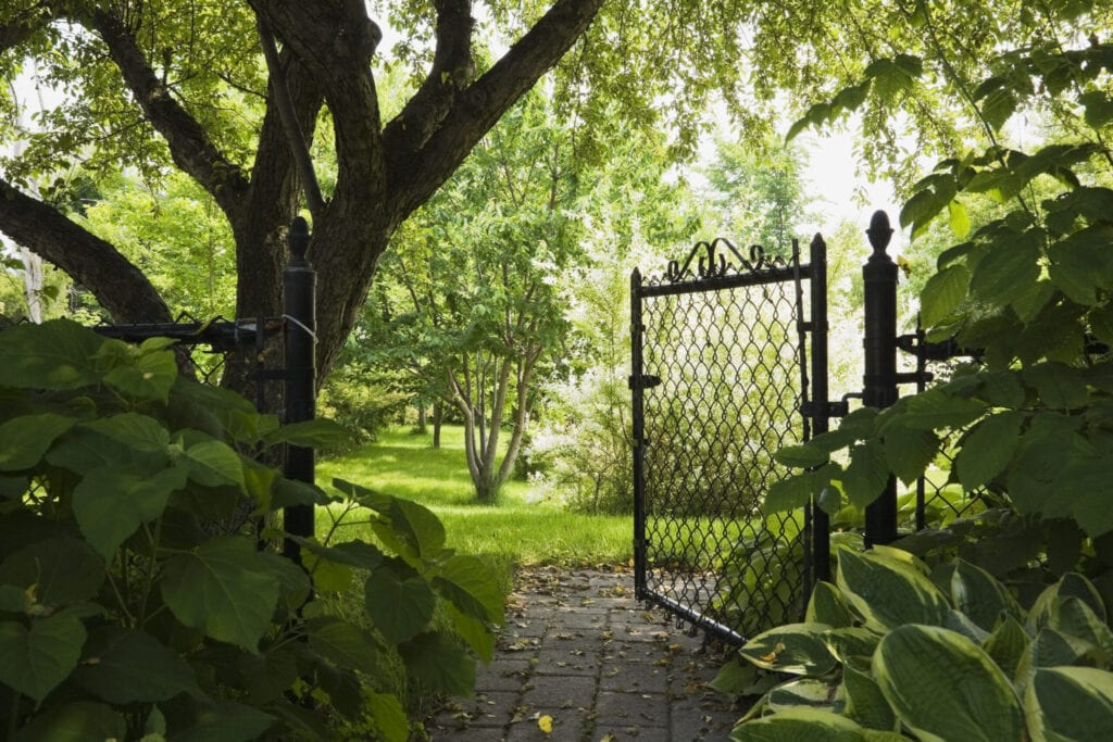 Paving stone path and opened wire mesh fence gate leading to a landscaped residential backyard garden at springtime, Quebec, Canada. This image is property released. CUPR0212