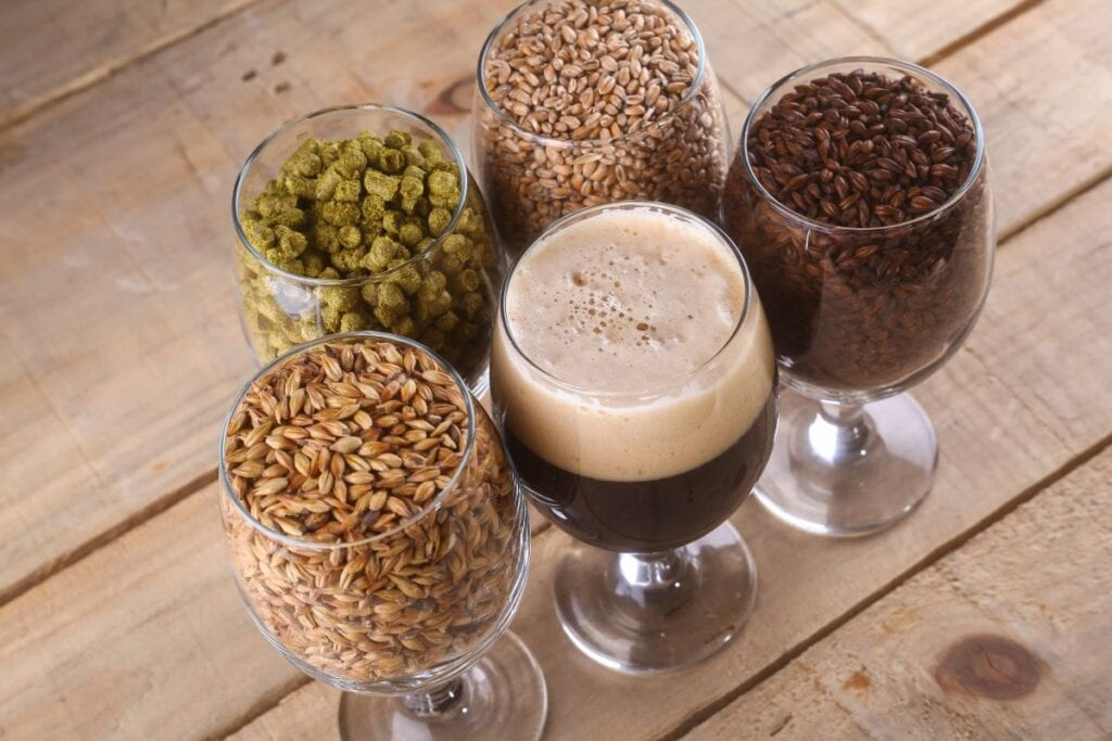 Glasses filled with beer and ingredients for home beer brewing