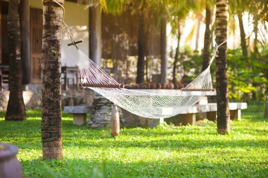 Relaxing hammock between two palm trees in yard