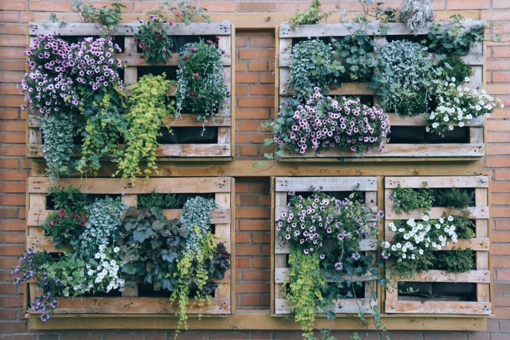 Planters on brick wall with vertical garden for small-yard landscaping